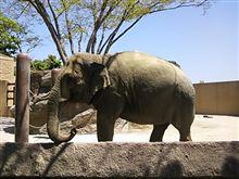 zooで心を癒そう♪