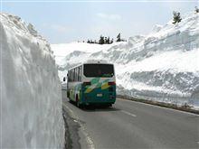 雪の回廊を見たかった・・・