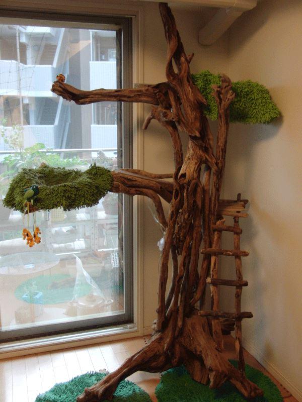 「自然木 流木 木製キャットタワー」hhhのブログ | Hhhのページ みんカラ