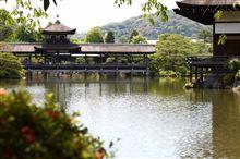 久々に京都