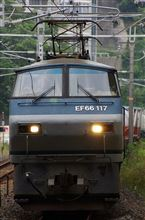EF66-117