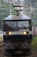 EF210-303
