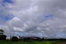 久しぶりの青い空