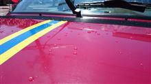 洗車日和。