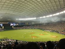 野球観戦(全パVS全セ)