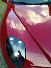 Alfa8cコンペツオーネ エキゾースト