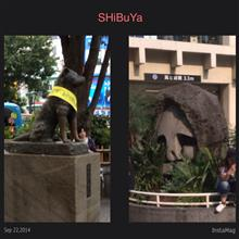 何年ぶりやろか。。。渋谷(笑)