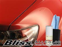 高密度ガラス繊維系ポリマー「ブリス」の実演販売。