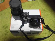 ミラーレスカメラ購入 α5100