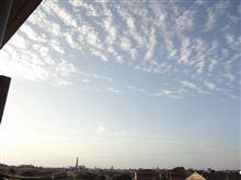 9月27日 またいい天気になりそうな土曜日、おはよ~♪