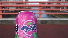 ファンタグレープ飲みながら家族待ち@橋の上♪ 運動会も終わって秋風の中,心地よい疲労感を癒しつつ…。
