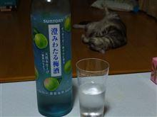 日曜の晩酌(梅酒)