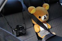 後部座席でもシートベルトを