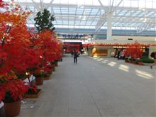 羽田空港国際線旅客ターミナル・20140930その1