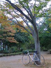 今日の朝ポタ(近所の公園へ)