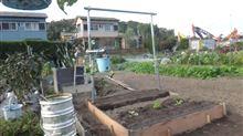 2015年企画 1坪菜園