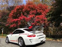 997GT3RS in autumn foliage