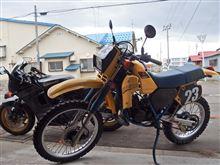 誰も知らないバイク。 持ち主も・・・ ワスレテタ ? ヾ(≧∇≦*)ゝ