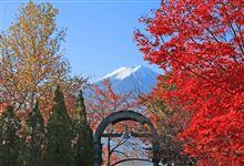 紅葉と富士山2014