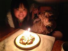 Happy's Birthday