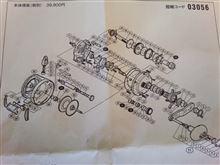 カルカッタ800Fはオモカッタ。 そこがブッシュじゃダメよ~ダメダメ。