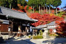 京都紅葉紀行 2014-1 京都西山 善峰寺