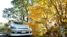 秋ドライブ!