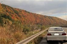 渓谷の紅葉 <抱返り渓谷、嵐山渓谷>