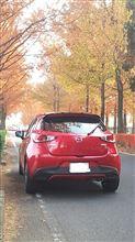 紅葉と愛車。