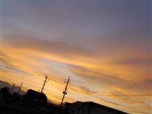 秋月紅葉撮り:番外編