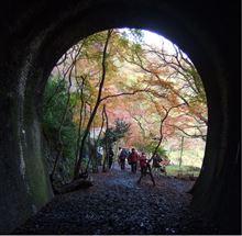 2014 愛岐トンネル群 秋の特別公開(紅葉)前半