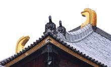 奈良公園 東大寺裏 紅葉・・・
