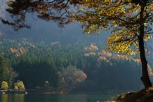晩秋の水辺巡り