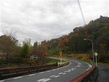 千葉県の南も紅葉が進んでます。