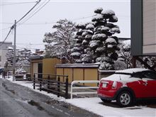 お向かいさんのMINIも雪化粧!