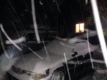 雪ですねぇ!の巻