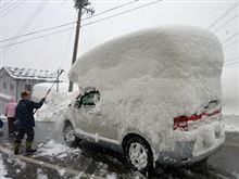 暴風雪の影響によるお荷物の遅延および荷受停止について