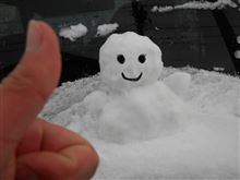 (`Д⊂)グォシグォシ 雪だぁ~~~!