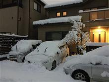 また雪が積もりました(・_・;