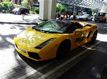 週末雑記 種子島旅行、シンガポールでガヤルド運転他