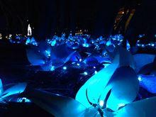 海浜公園イルミ2014