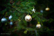 もうひとつのクリスマス