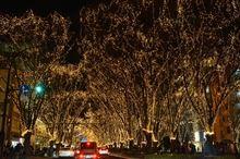 冬休み初日はパスタとヒカペー (^。^)