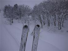 雪道ドライブとスキーはどちらが楽しい?
