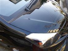 ヴィッツの年末洗車