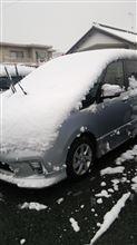 雪積もってます(>_<)