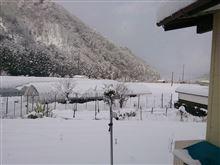 今回の積雪!