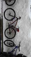 初詣サイクリング♪