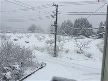 雪ですなww