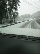初雪です(^_^)
